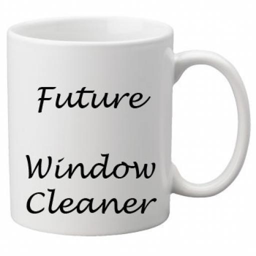 Future Window Cleaner 11oz Mug