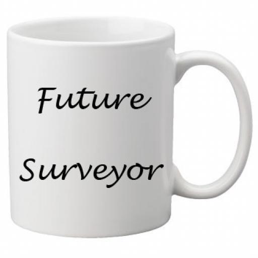 Future Surveyor 11oz Mug