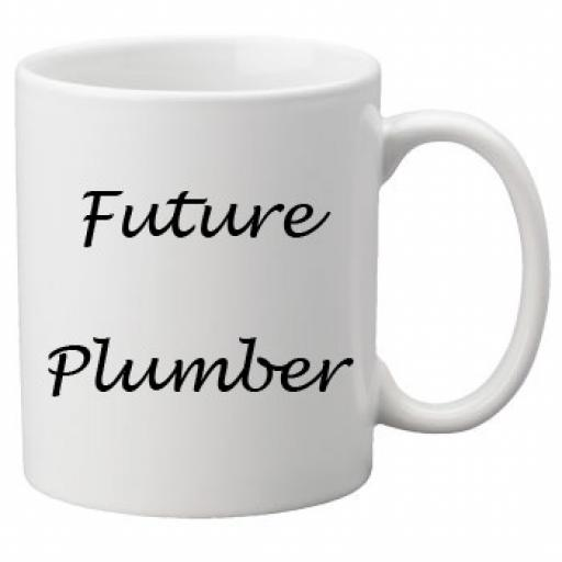 Future Plumber 11oz Mug