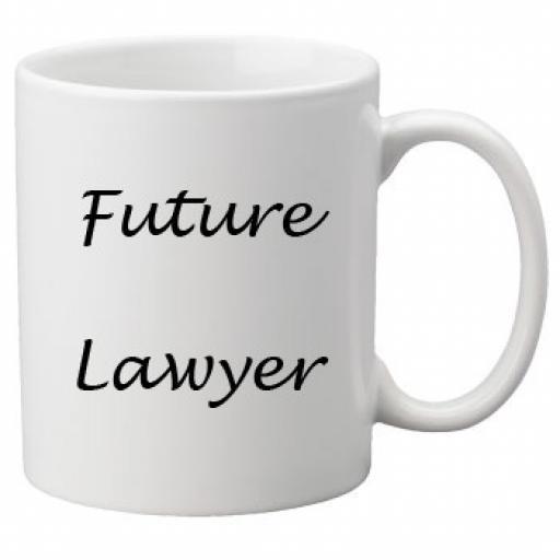 Future Lawyer 11oz Mug