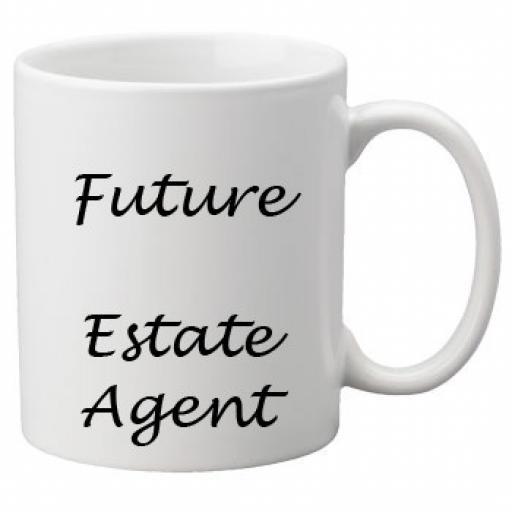 Future Estate Agent 11oz Mug