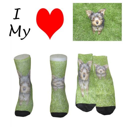 I Love My Dog Novelty Socks - Great Novelty Socks Mens, Ladies Socks Pug, Labrador, (Adult Size 6-12)